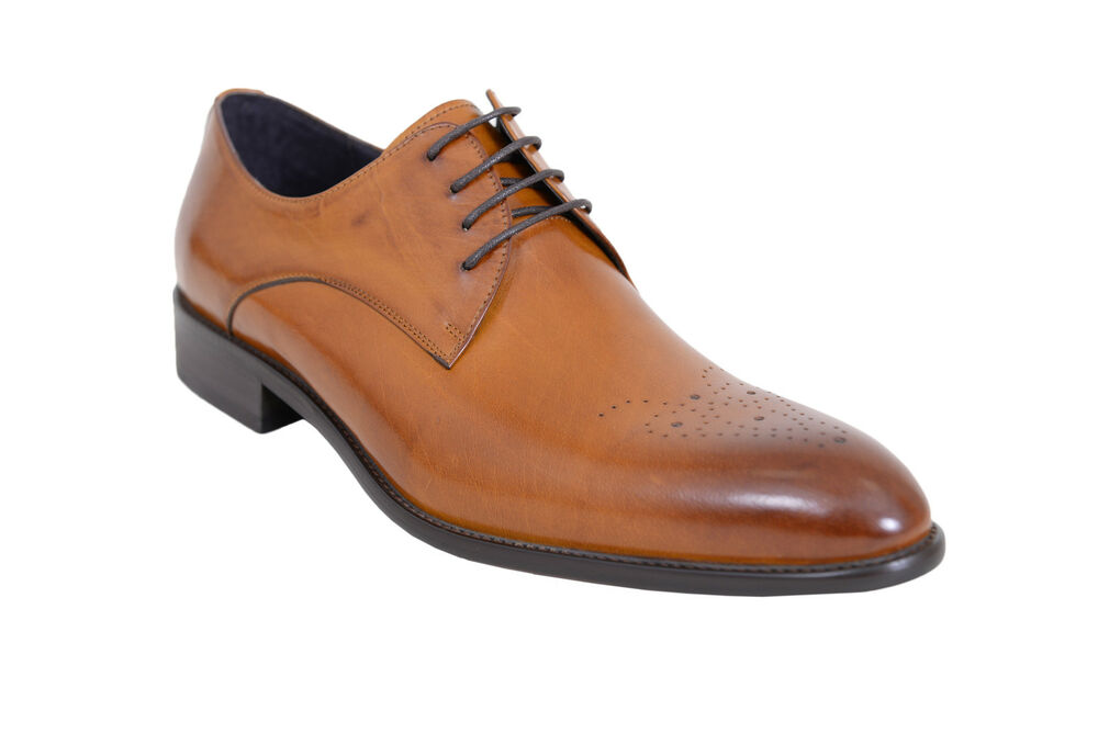 Dark Brown Oxfotd Shoe Brogue Ebay
