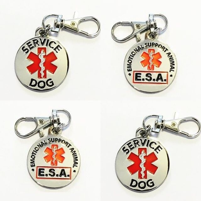 All Access Canine Service Dog Emotional Support Animal