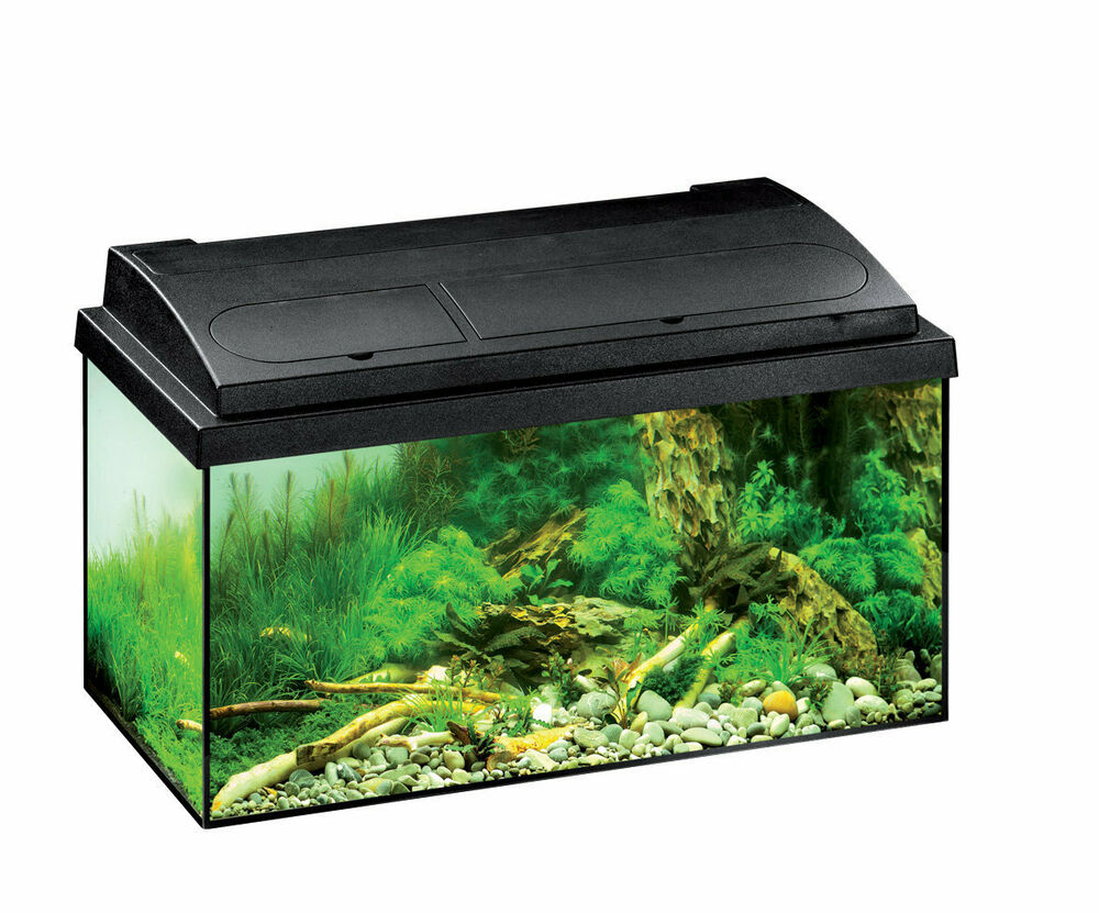 eheim aquarium komplett set aquastar 54 schwarz aquarium set f s wasseraquarien ebay. Black Bedroom Furniture Sets. Home Design Ideas