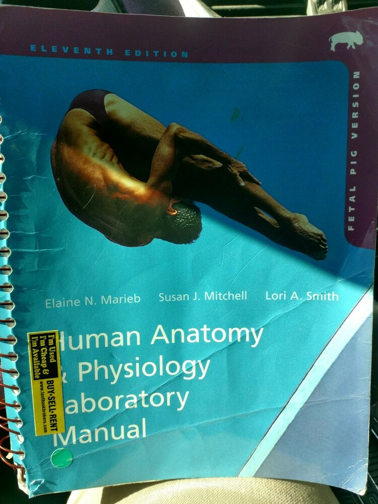human anatomy and physiology 11th edition rent