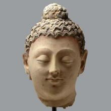 A large Gandhara Stucco Head of the Buddha, ca. 3rd century AD