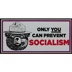 Only You Can Prevent Socialism White Decal Vinyl Decal Bumper Sticker