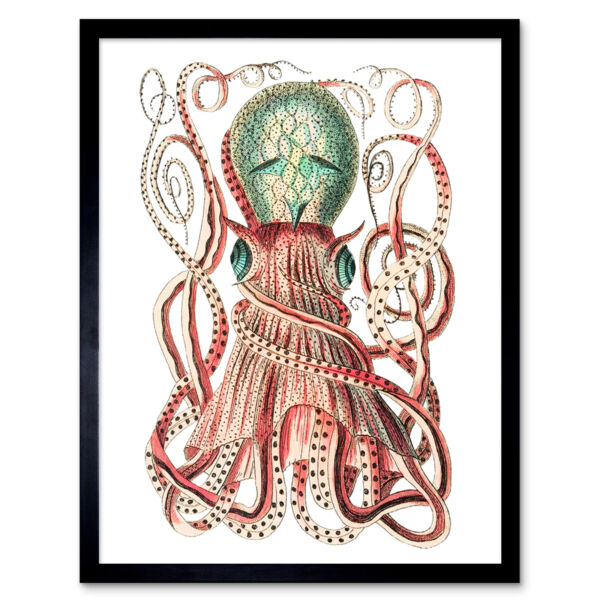 Royaume-UniGranulated Cuttle Octopus White 12X16 Inch Framed Art Print