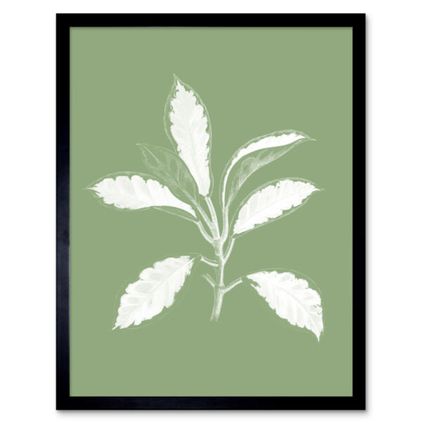 Royaume-UniWhite and Green Exotic Leaves Wall Art Print Framed 12x16
