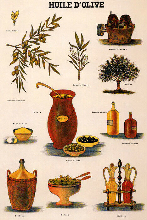 Huile d 39 olive olive press tree branch oil food french for Alif tree french cuisine