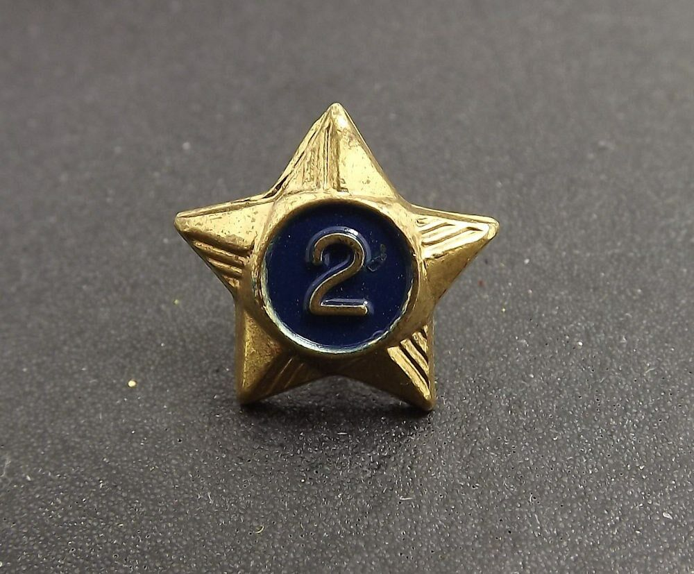 Collectible Vintage Boy Scouts 2 Year Enamel Star Hat Pin