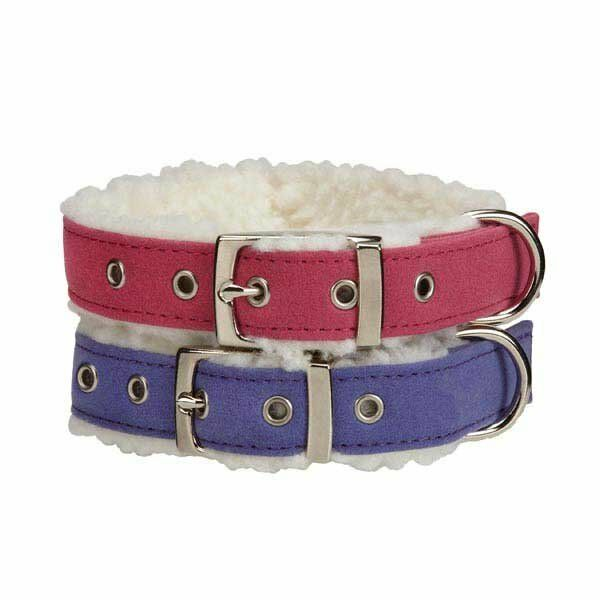 Sherpa Lined Dog Collar
