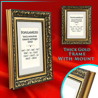 LARGE Gold Ornate Antique Style Picture Photo FRAMES with MOUNT
