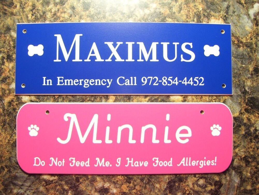Pet Crate Tags Dog House Kennel Signs 19 Colors Ebay