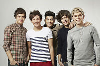 One Direction 1D Poster . One Piece Wall Art Print.