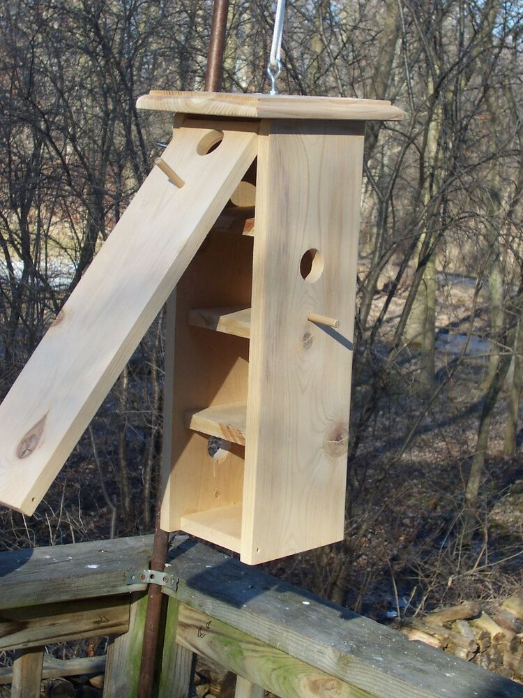 Photo How To Build A Bluebird House Plans Images