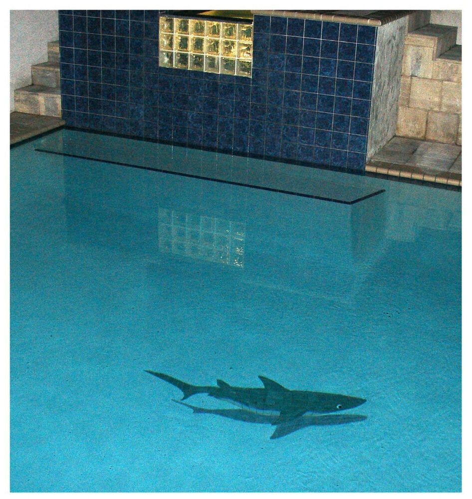 Mosaic Shark W Shadow 61 Quot Long For Swimming Pool Deck Wall