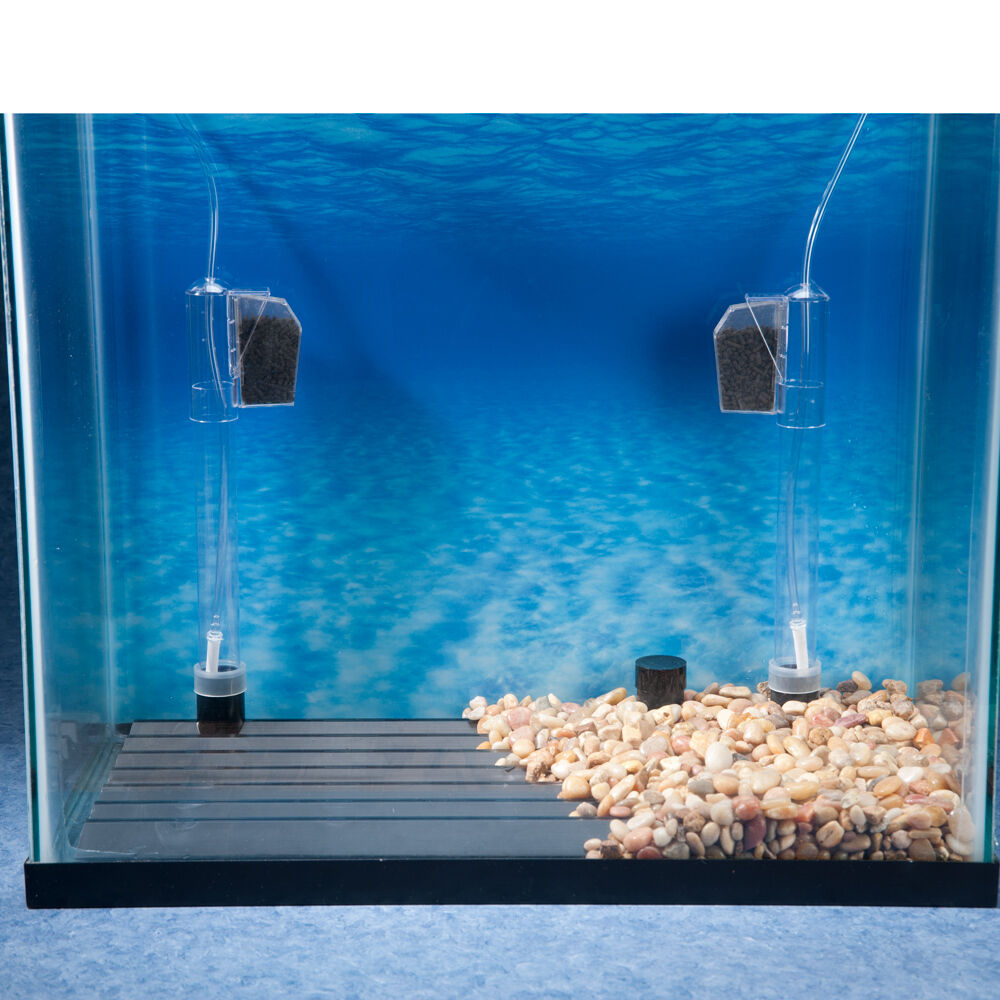 Under aquarium filter system under free engine image for for Fish tank filtration