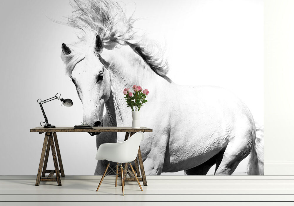 Photo wallpaper white horse wall mural mustang 320x230cm for Equestrian wall mural