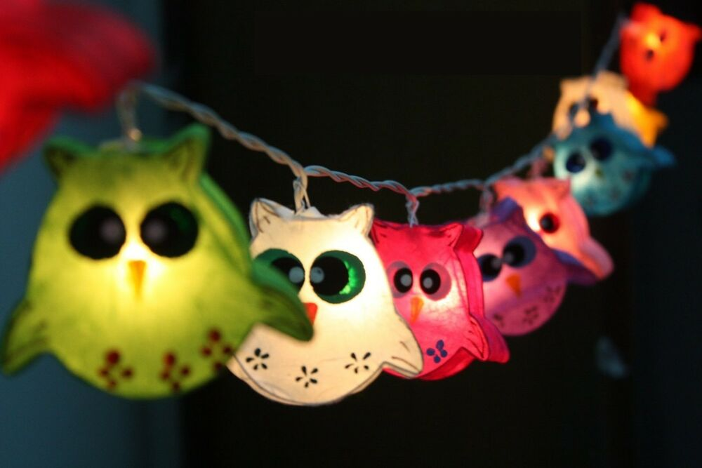 Owl bird fancy lantern string party fairy kid bedroom home - String lights for bedroom ...