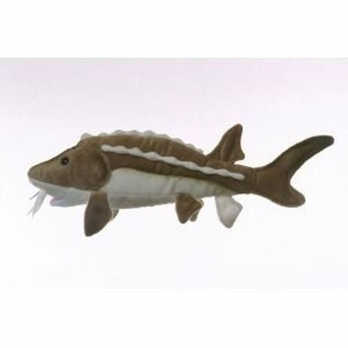 17 sturgeon fish plush stuffed animal toy ebay for Fish stuffed animal