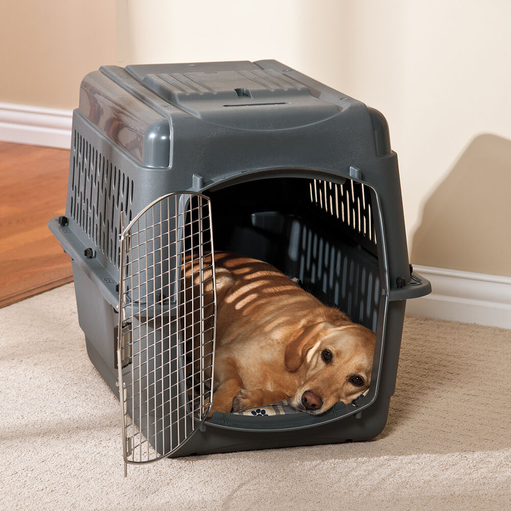 petmate pet porter ebay With pet porter dog crate large