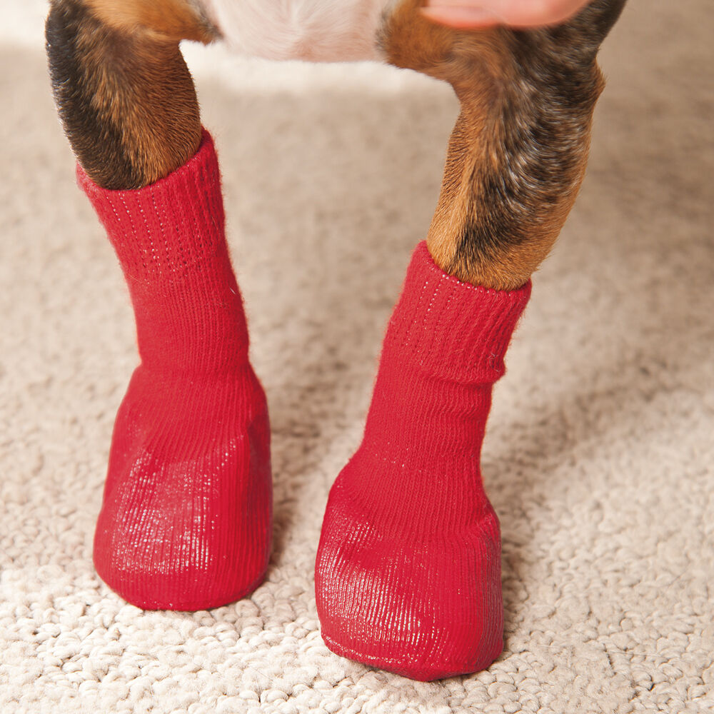 Knitting Pattern For Dog Socks : Rubber-Bottomed Knit Dog Socks eBay