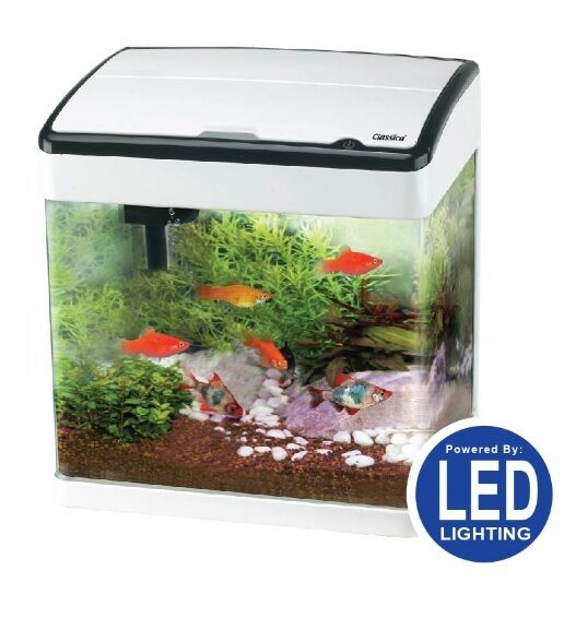 CLASSICA COMPLETE AQUARIUM FISH TANK STARTER KIT LED LIGHTING FILTER ...