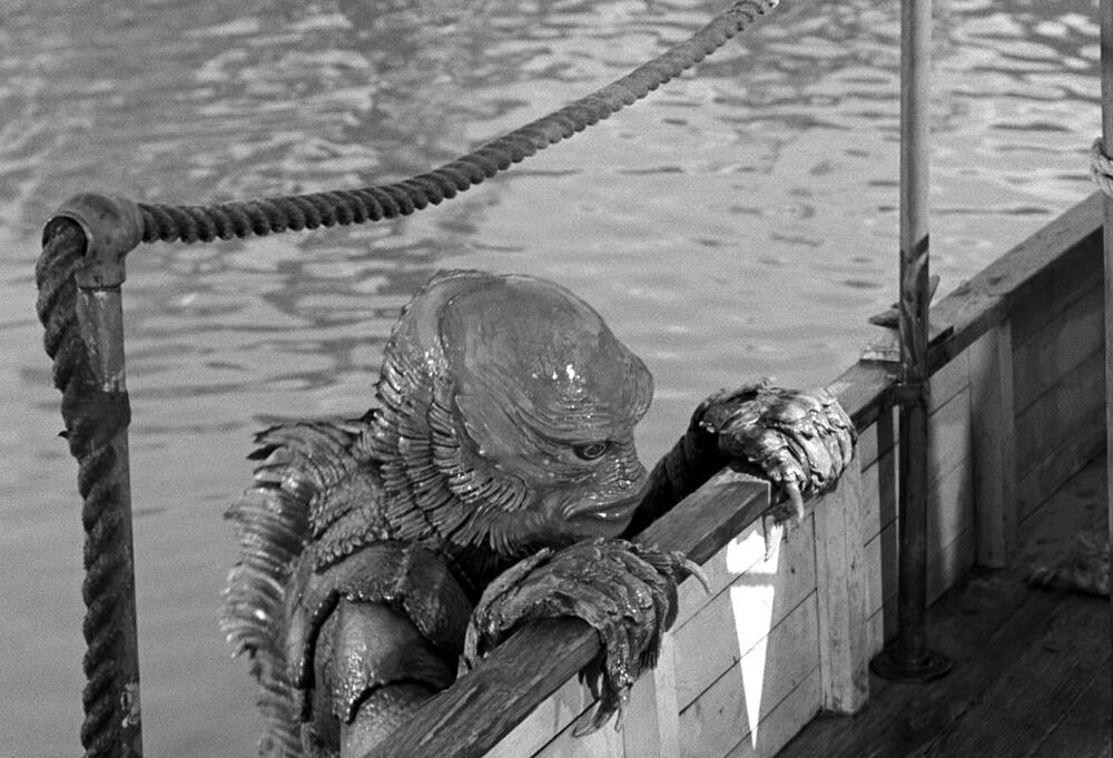 Creature | Black and White Wiki | FANDOM powered by Wikia