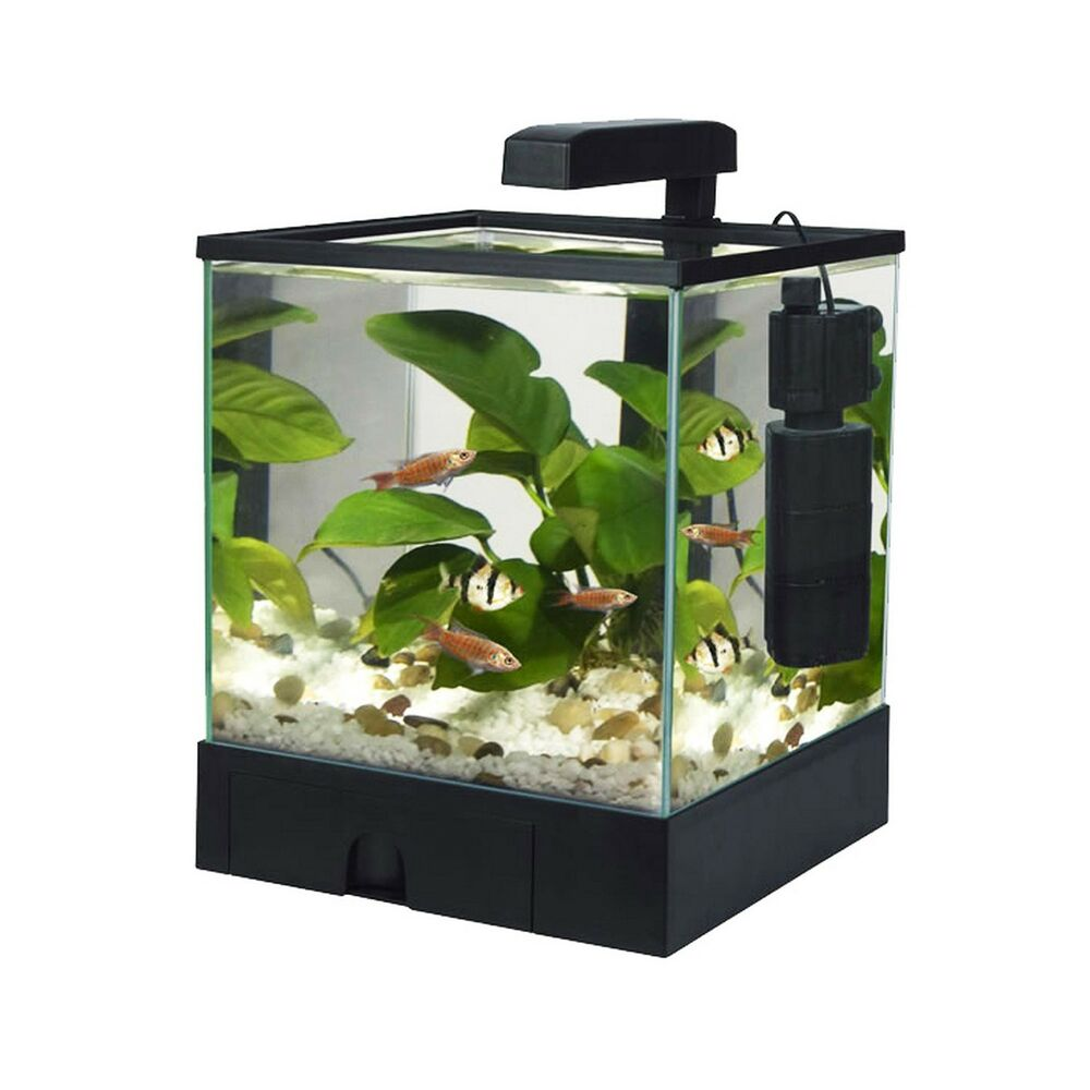 Fish 39 r 39 fun aquarium fish tank aqua box black 5 5l ebay for Fish tank aquarium