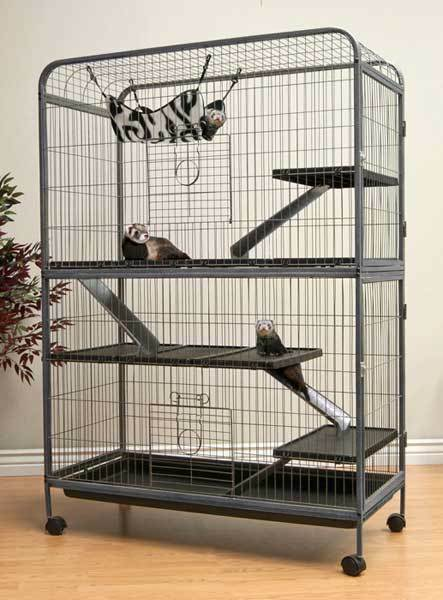 Living Room Series Extra Large Top Quality 5 Level Ferret Indoor Hutch Cage Ebay