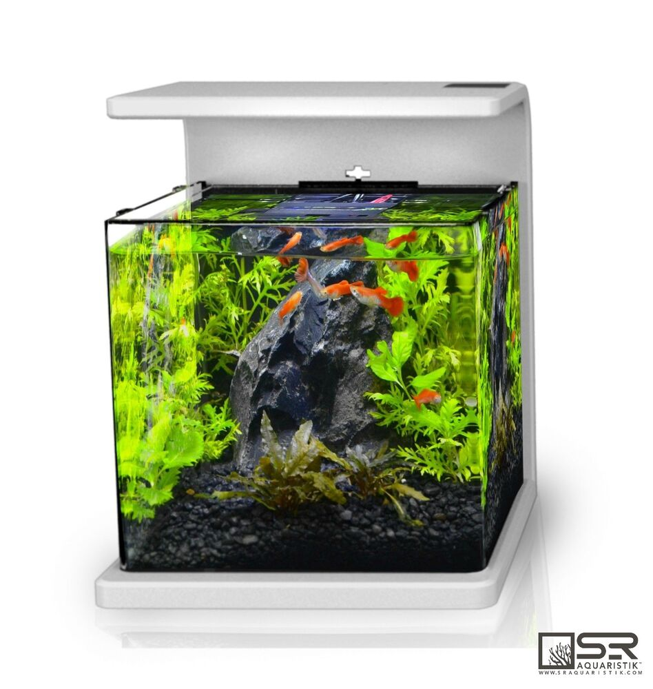 nano desktop aquarium kit 4 gallon all glass led lighting sr aquaristik ebay. Black Bedroom Furniture Sets. Home Design Ideas