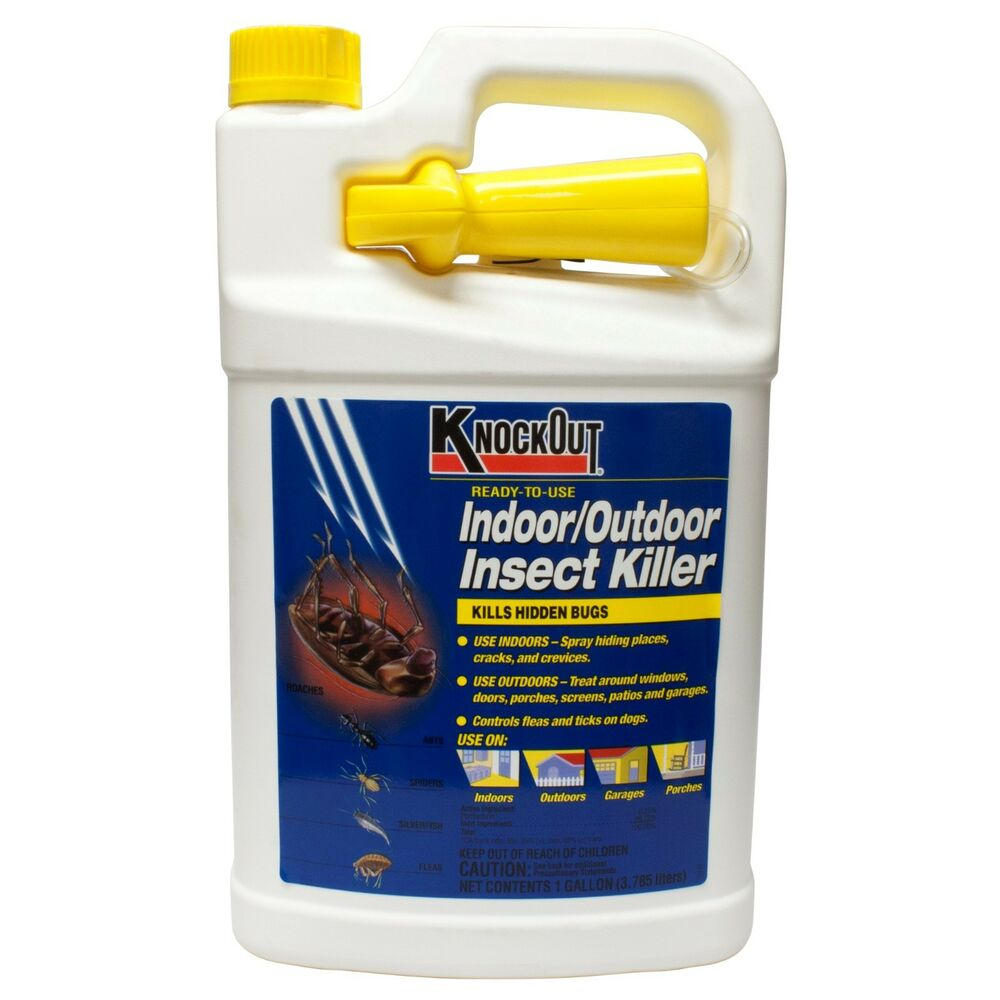 Indoor Outdoor Insect Killer Readyto Use Kills Roaches