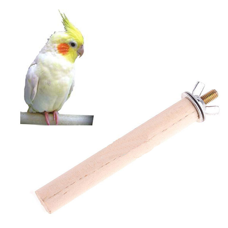 Wood Bird Toys : New useful in cage bird perch parrot stand rack wood