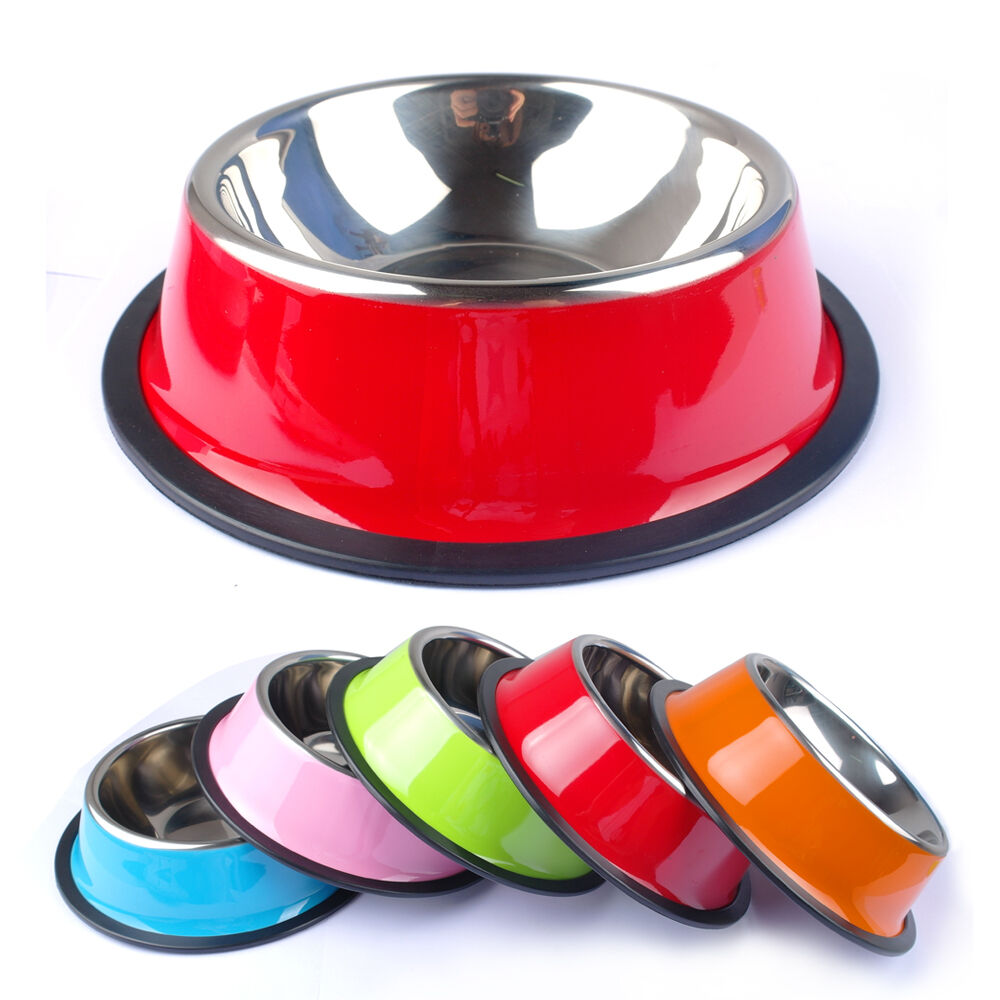Cat Food Dishes