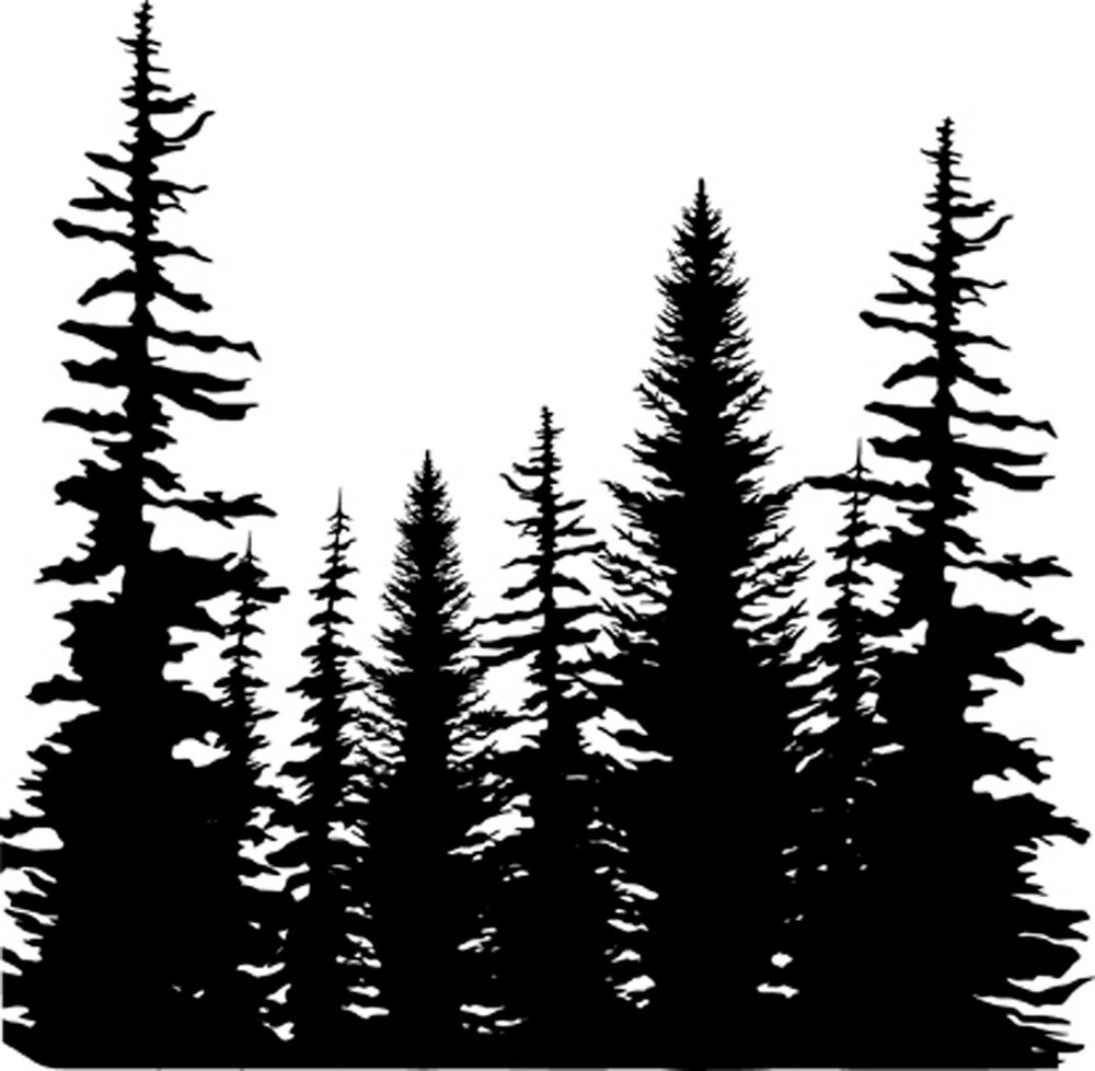 Pine Trees Cover A Card Background Unmounted Rubber Stamp ...