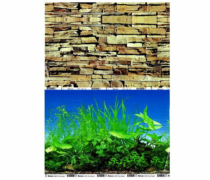 Fish tank aquarium 12 tall 30cm background 2 sided for Tall fish tank decorations