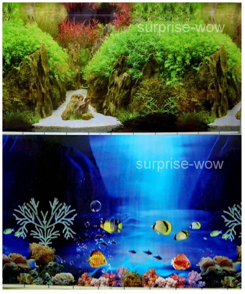 Fish tank aquarium 24 h 60cm background 2 sided picture for Double fish tank