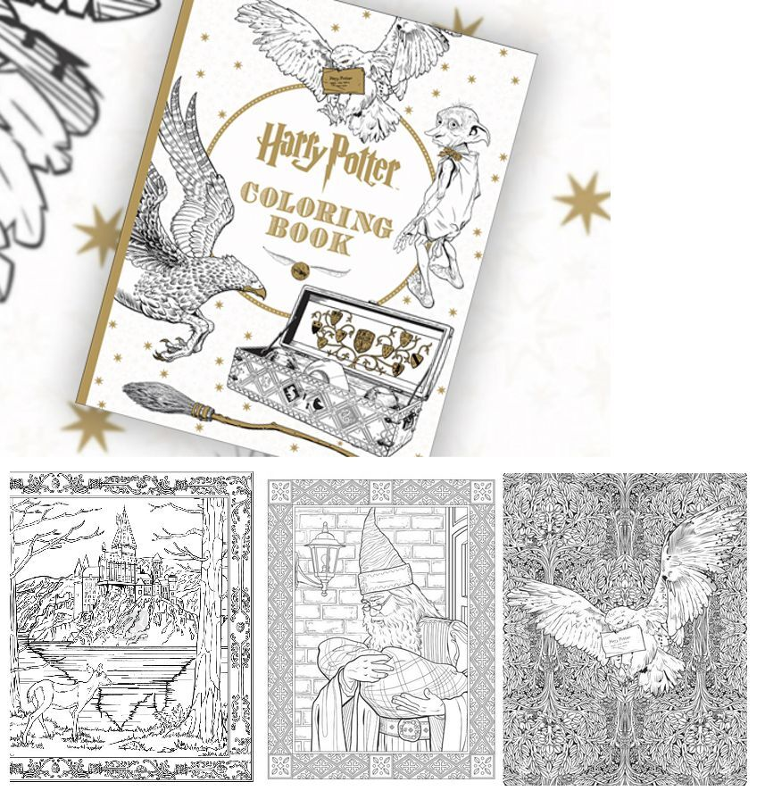 Adult Coloring Book HARRY POTTER Color Art Drawing