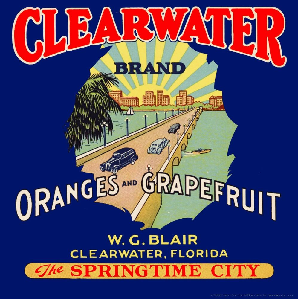 orange and graphfruit in florida essay Florida citrus gifts there's something amazing inside every specially packaged florida citrus gift every florida orange, grapefruit and tangerine is grown in the best citrus soil in the world, sun-ripened and ready to eat.
