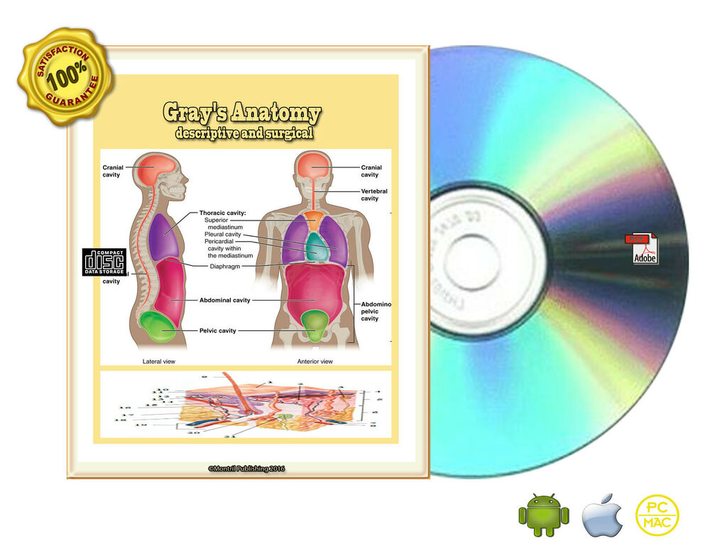 Gray\'s Anatomy descriptive and surgical-Atlas for Students- Gray ...