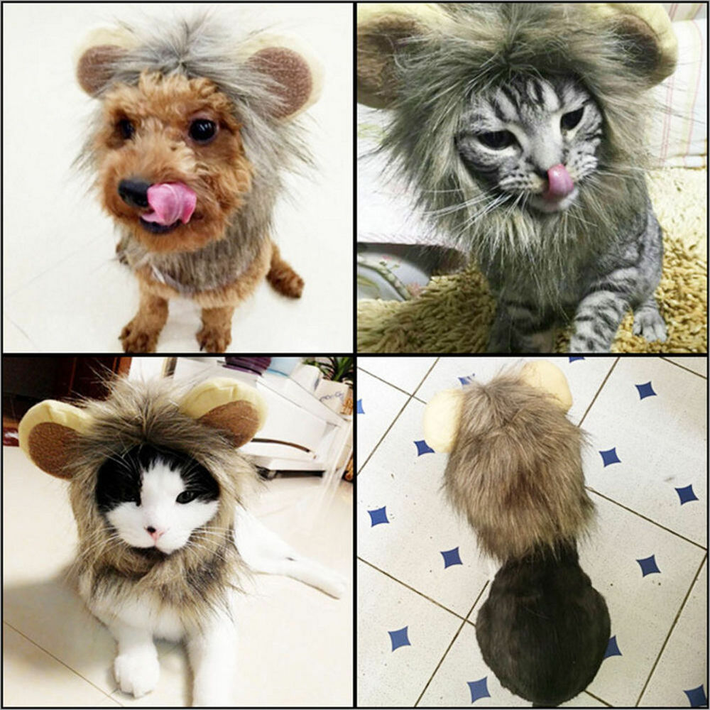 furry pet hat with ears costume lion mane wig for cat christmas party dress up ebay. Black Bedroom Furniture Sets. Home Design Ideas