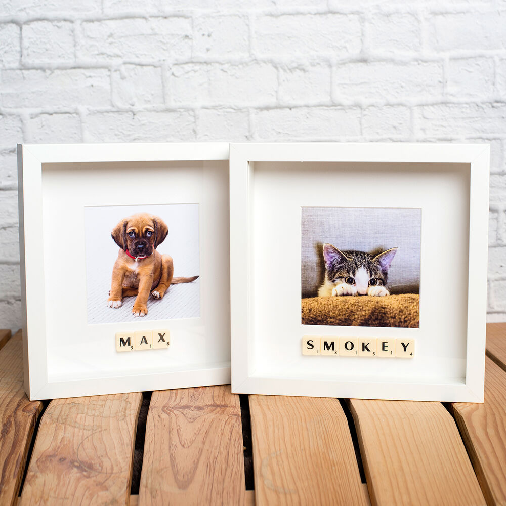 PERSONALISED PET PHOTO FRAME - YOUR DOG or CAT NAME ADDED WITH ...