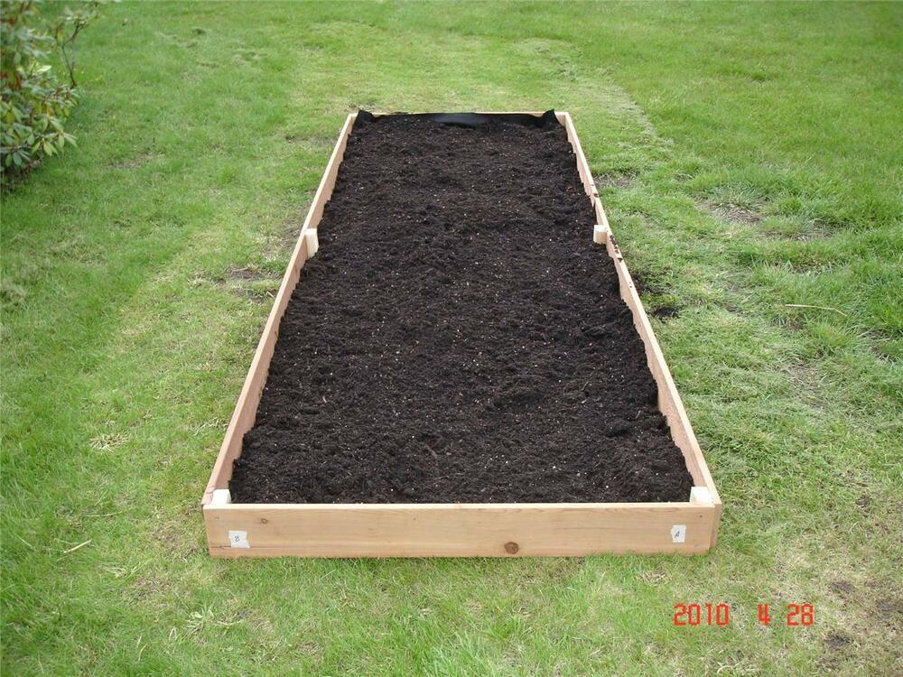 Tall raised garden beds new 3x12 cedar raised planter for Roman bathrooms blackheath