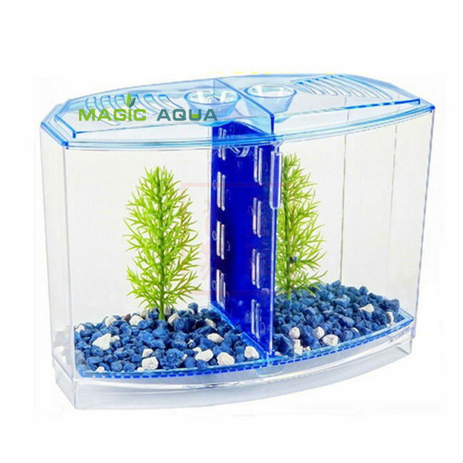 Fighting betta fish tank kit aquarium fish tank twin bow for Fish tanks for sale ebay