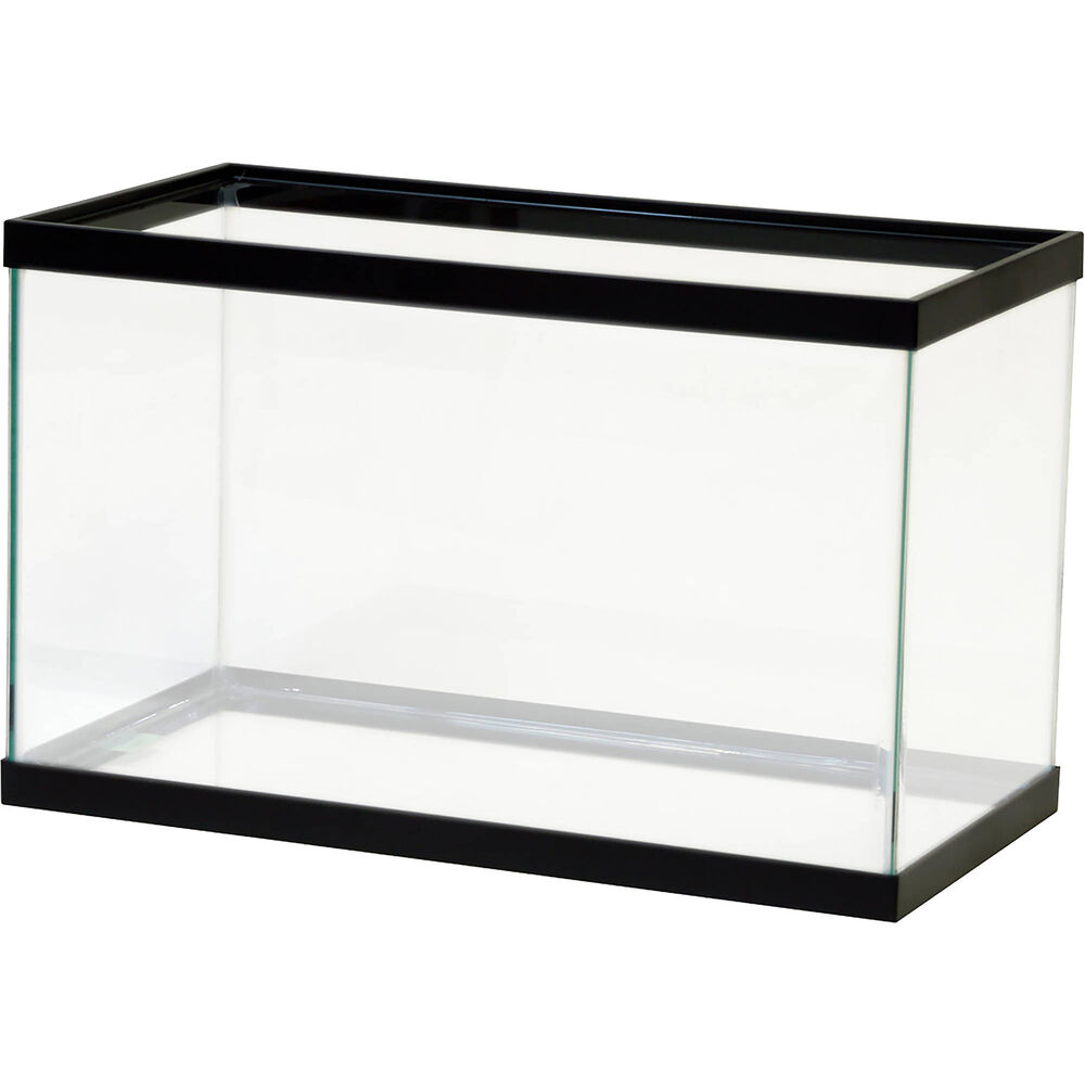 10 gallon fish tank aquarium clear glass terrarium pet for Acrylic vs glass fish tank