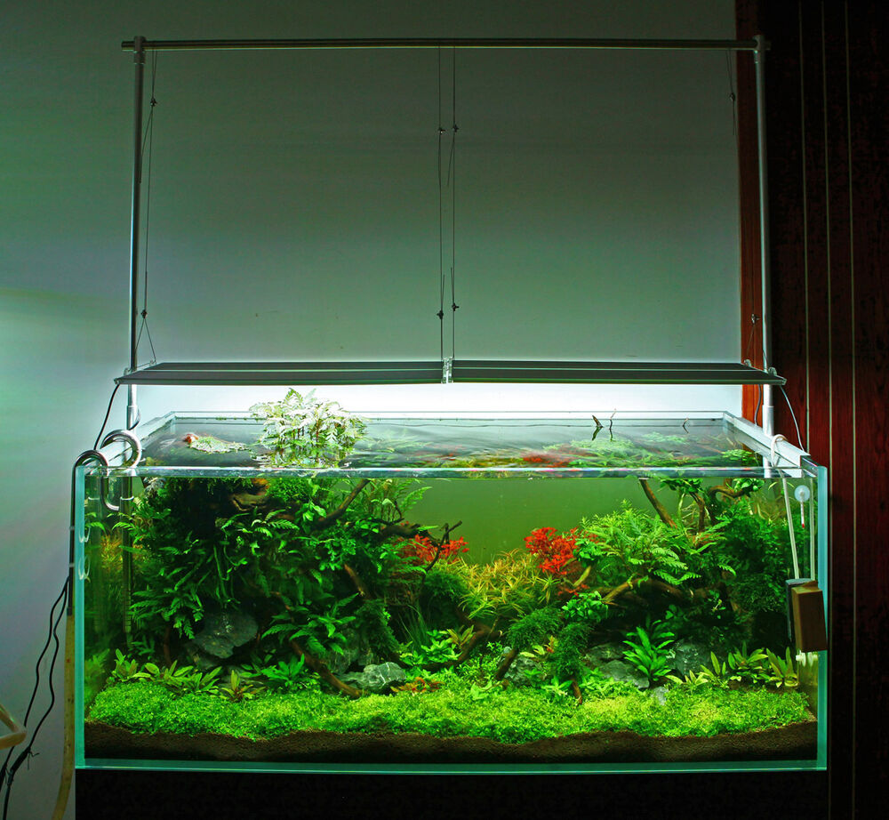 Chihiros rgb ada style plant grow led light aquarium water for Growing plants in water with fish