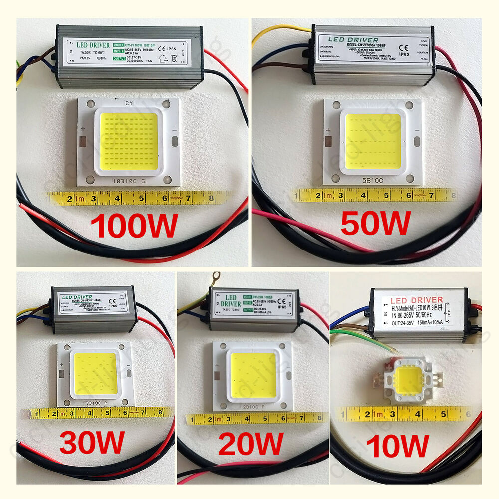 10w 20w 30w 50w 100w waterproof high power cob led driver supply smd chip bulb ebay. Black Bedroom Furniture Sets. Home Design Ideas