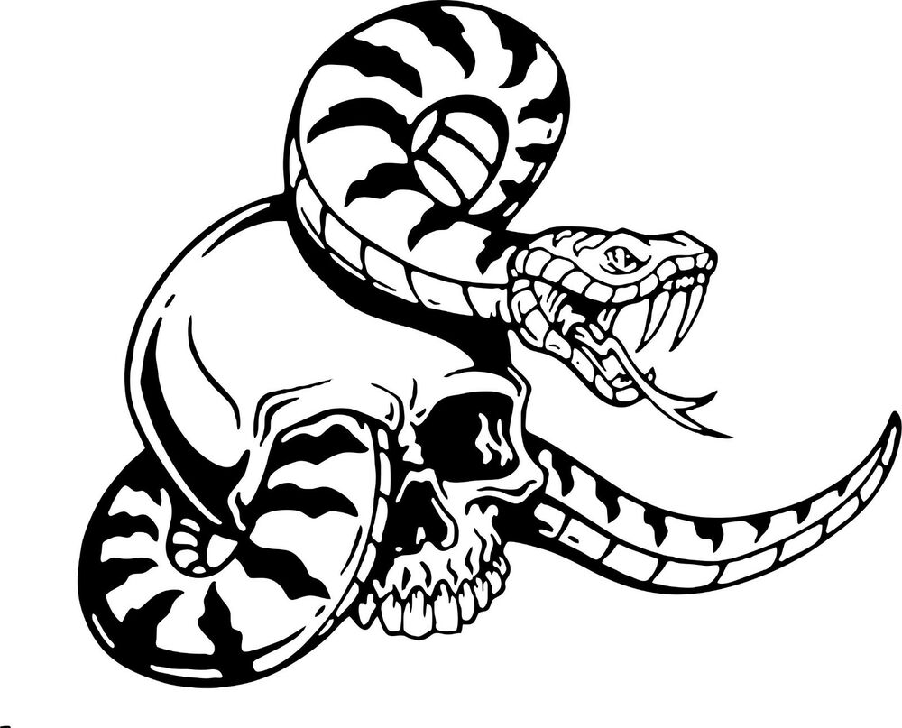 Snake Skull Serpent Car Truck Window Laptop Vinyl Decal Sticker Ebay Skeleton Diagram The At Very