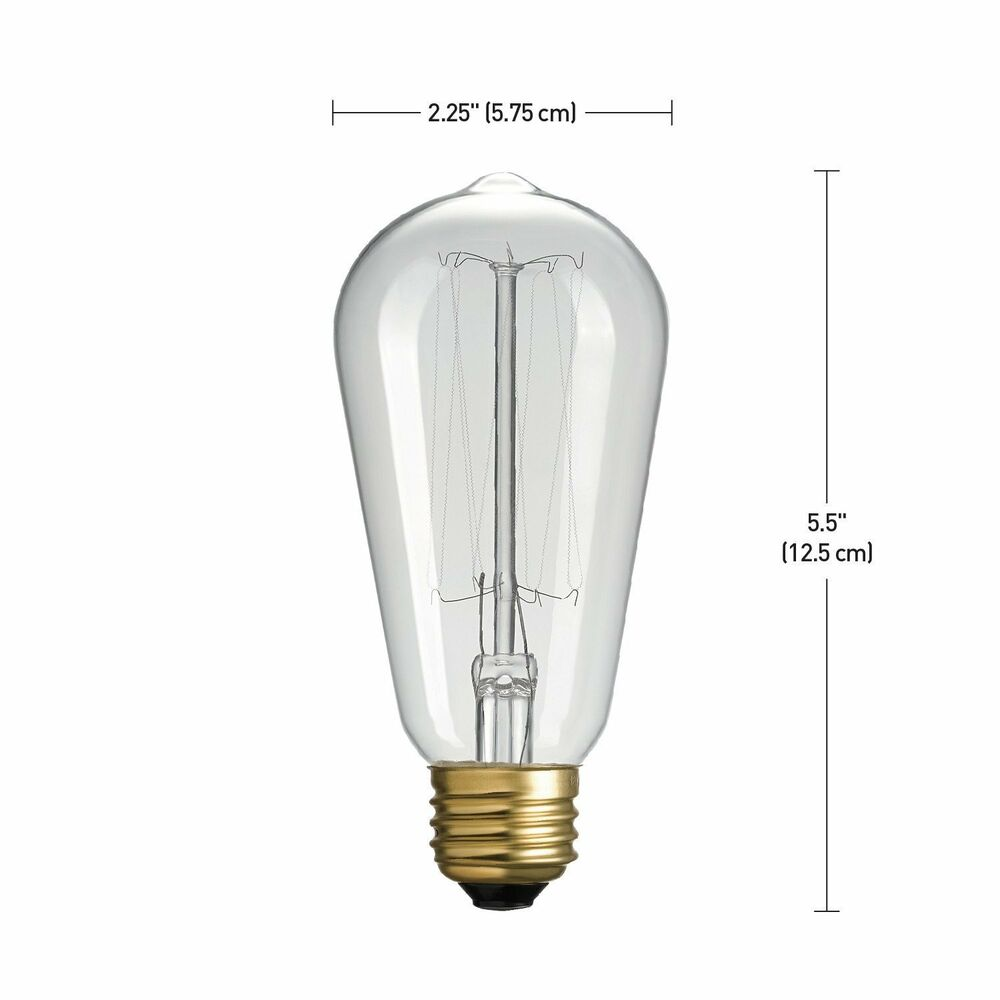 60110e92959 Globe Electric 40-watt Vintage Edison S60 Squirrel Cage Incandescent E26  58219013243