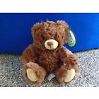 Cuddly Brown Bear Soft Toy Souvenir with Muir Woods Top & Label