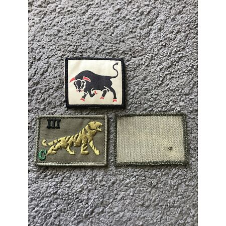 img-British Army PWRR Tiger Badge - ID TRF Combat Shirt/Jacket Patch 3rd C C Coy