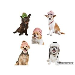 Bond & Co Reddy and Modern Luxe Dog Hats Caps