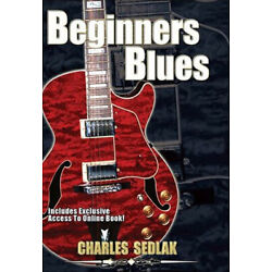 Blues Guitar Lessons For Beginners Video DVD Licks Scales Bends Exercises