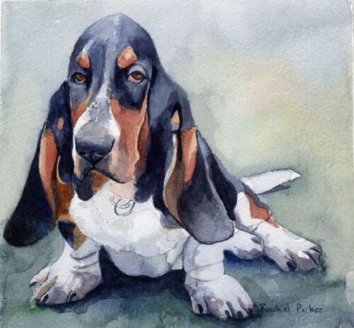 Giclee print of basset hound watercolor dog art please pet for Dog painting artist